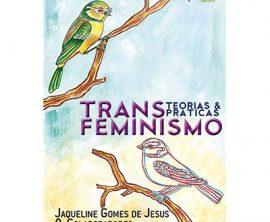 Transfeminismo – teorias e práticas
